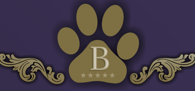A Pet Hotel named The Barkley Boutique